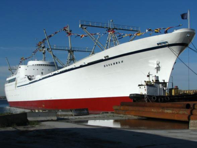 ns_savannah_2008